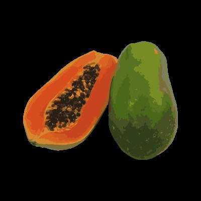 Papaya-Vector